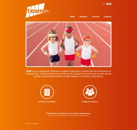 team-org.com